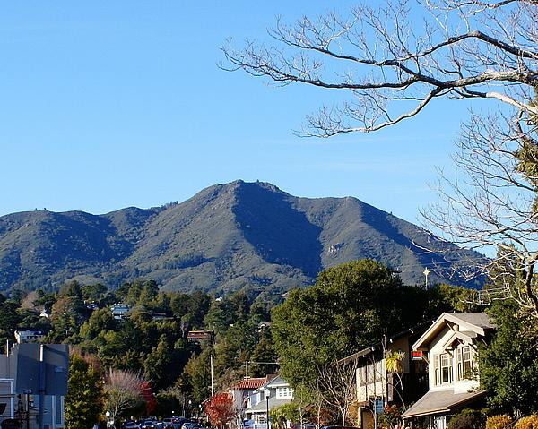 mt_tamalpais_view_from_mill_valley_ben_upham.jpg
